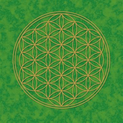 Blume des Lebens Poster grün
