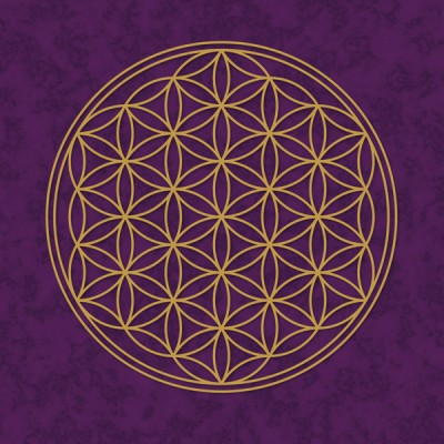 Blume des Lebens Poster lila